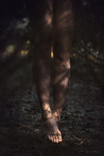 lisa_wittmann_photography_canon_forest_conifer_foot_sun_light_shadow_nude_barefoot_legs_beautiful_woman_model_sensual_body_female