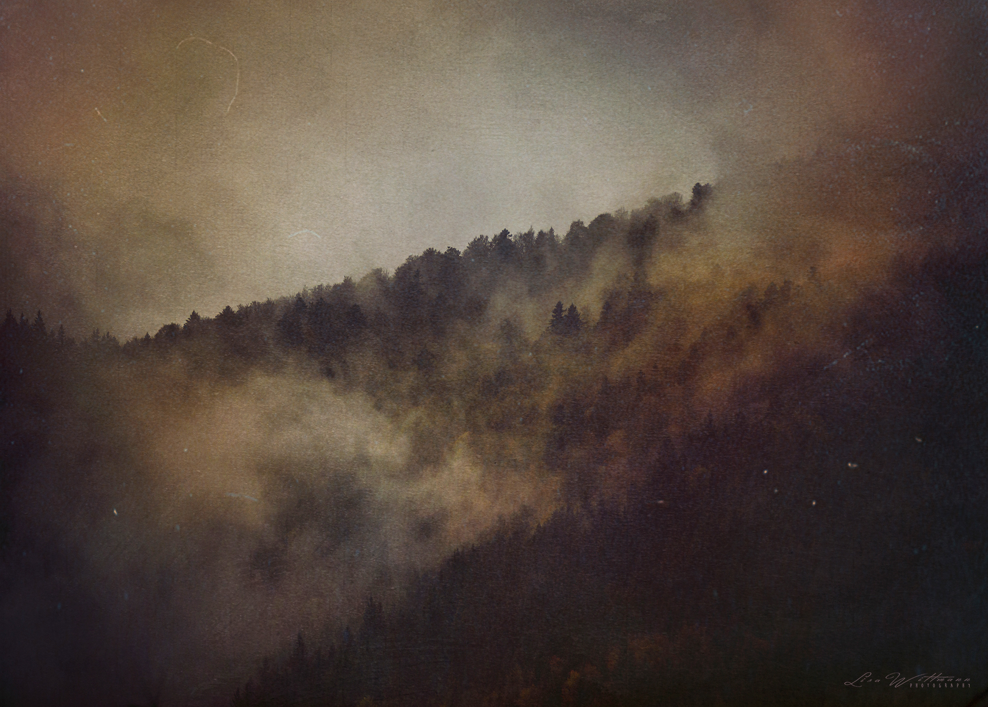 lisa_wittmann_photography_blackforest_fog_mist_coniferous_forest_moody_analogue_canon_gloomy_dream_beautiful_dream_fire_burn_germany_photoshop_insta_